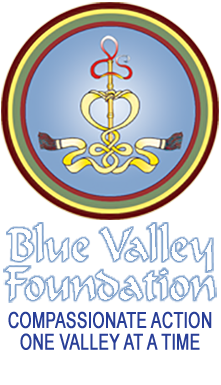 Blue Valley Foundation Logo