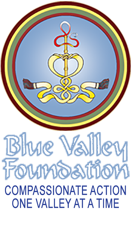 Blue Valley Foundation Retina Logo